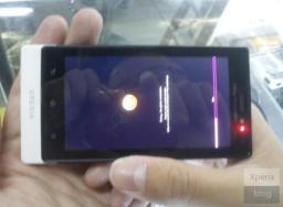 Sony Ericsson Pepper-Leak (2)