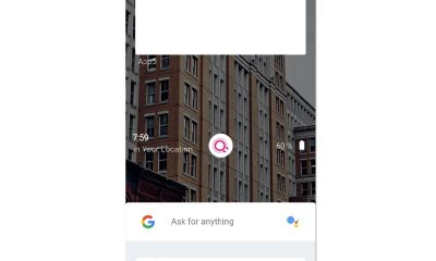 Fuchsia Screenshot