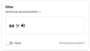 google-pronunciation-5