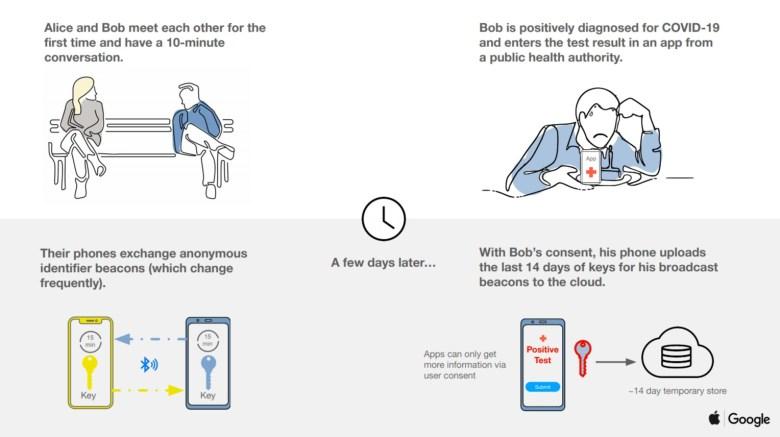 Corona Tracking Google Apple