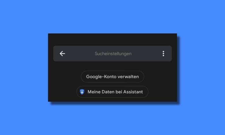 Google Assistant Suchleiste