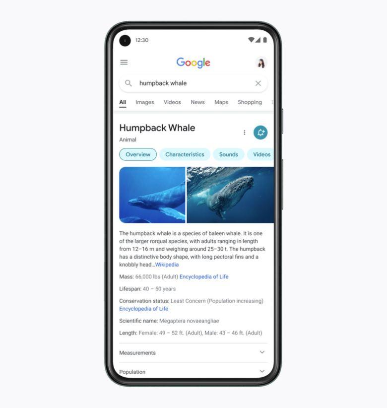 Mobile Google Suche 2021