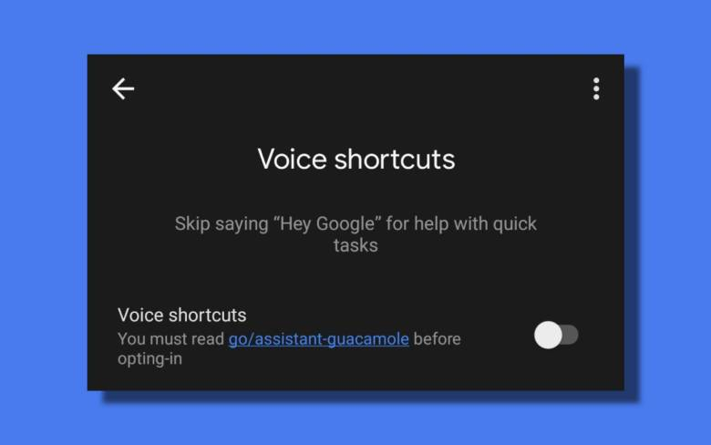 Voice Shortcuts Leak (1)