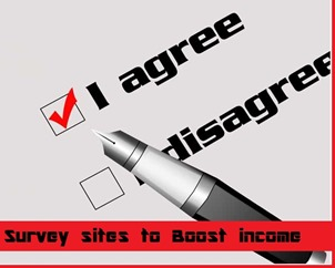 survey sites to boost income
