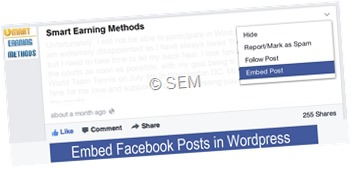 embed facebook posts in wordpress