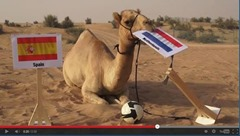 Shaheen the Camel Animals That Can Predict FIFA Winning Team