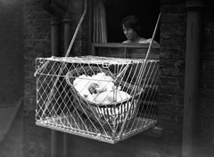 1.baby cage