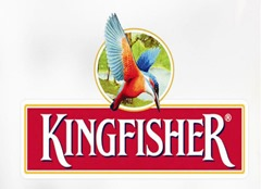 Kingfisher Most Popular Brands In India In 2015