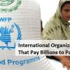 10 International Organizations That Pay Billions to Pakistan