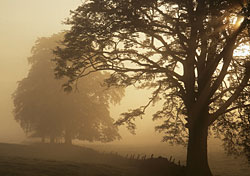 Top five bargain destinations for fall 2005