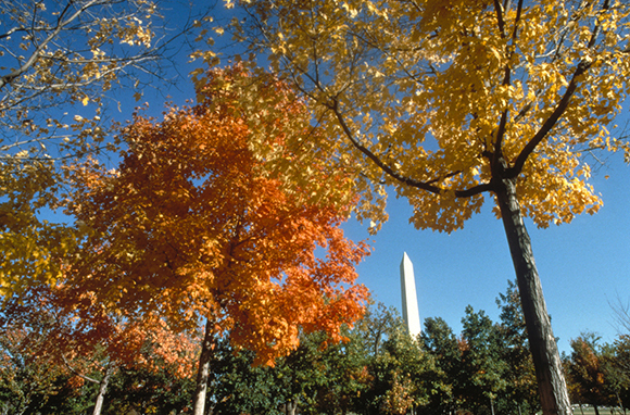 Off-Peak Fall Hotspots