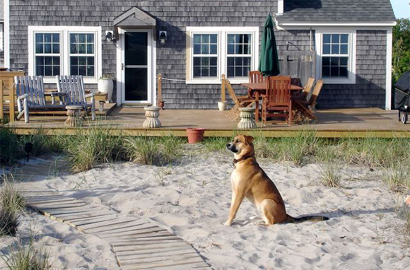 Summer Beach Cottages