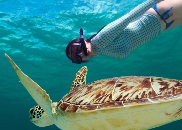 10 Best Snorkeling Spots in the World