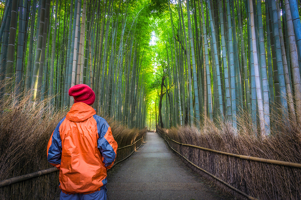 arashiyama bamboo forest kyoto japan