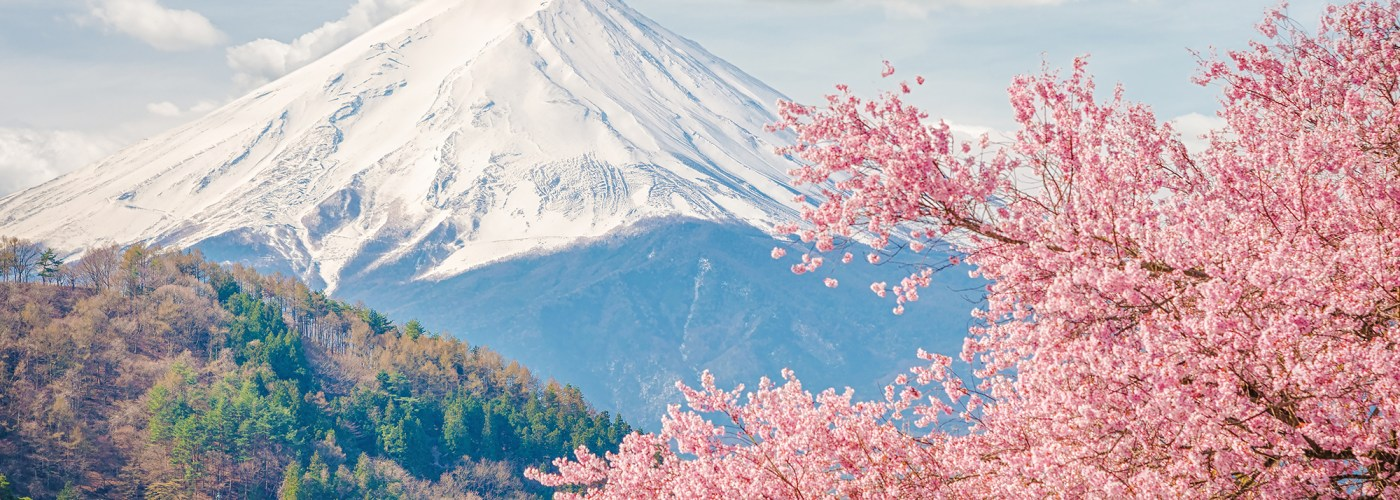 mt fuji in the spring