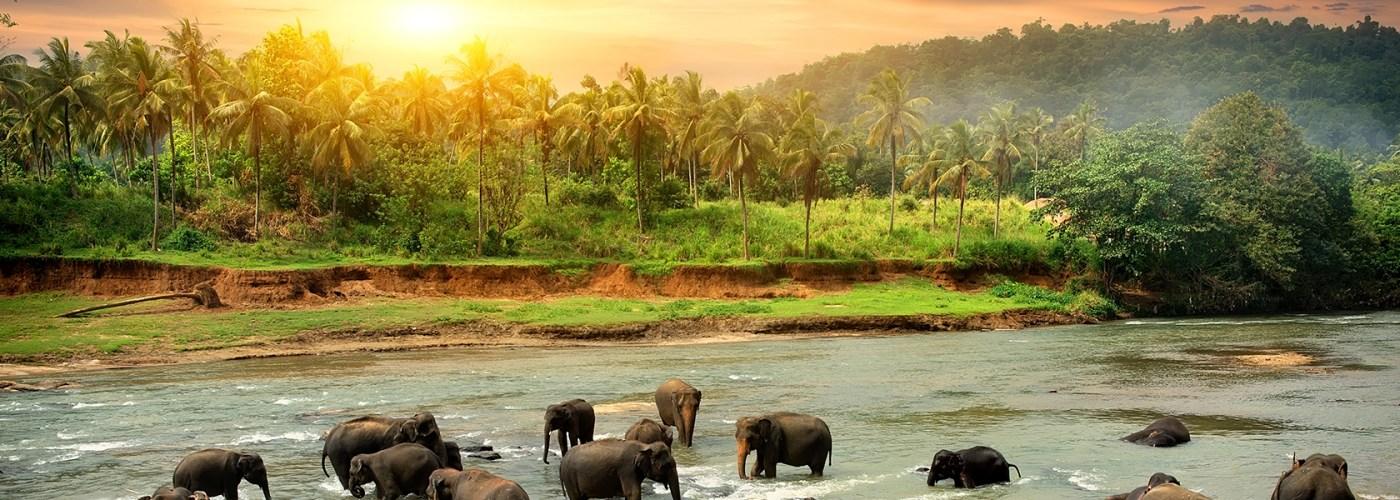 bucket list safaris