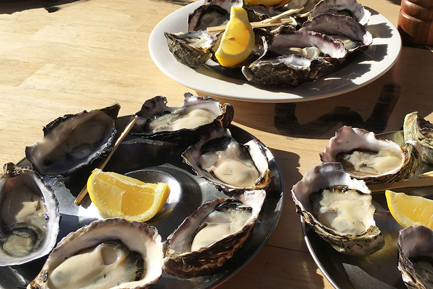 bruny island oysters.