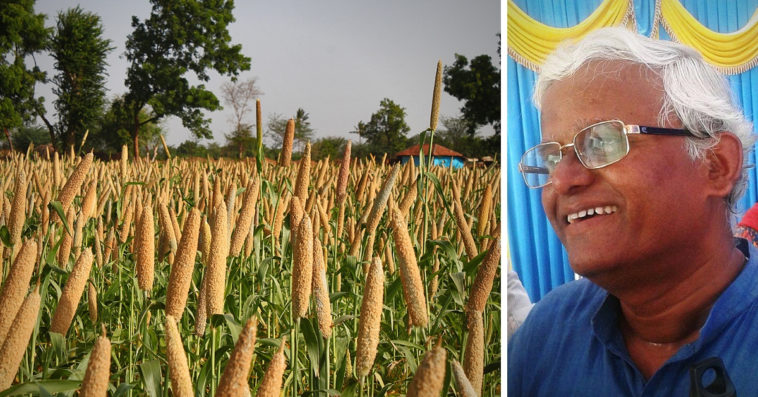 Cancer to Diabetes: Mysuru's Millet Doctor Ditched US Job to Make India Healthy