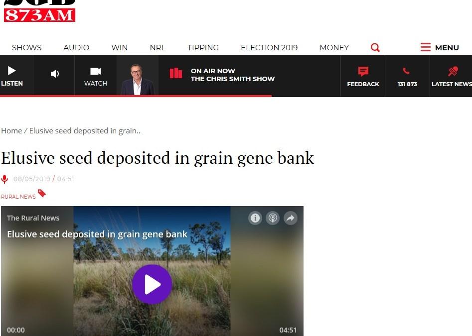 Elusive seed deposited in grain gene bank