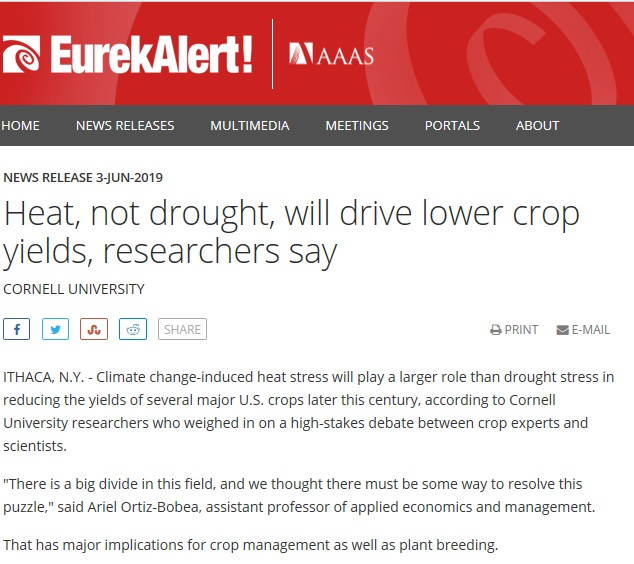 Heat, not drought, will drive lower crop yields, researchers say