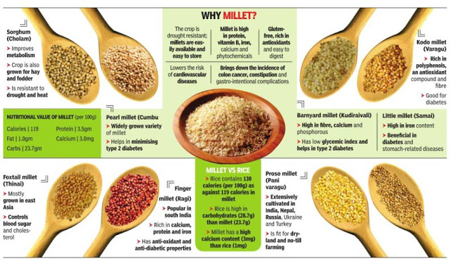 Karnataka: Agri price commission recommends millets for mid-day meals, decentralised MSP and procurement system