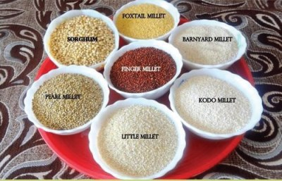 Push for nutri-cereals, export boost — the NITI Aayog tips to tackle foodgrain surplus