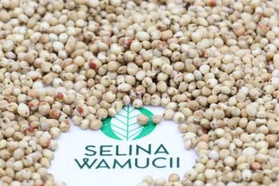 Tanzania: Tari Improves Drought Resistant Crops, Trains Farmers