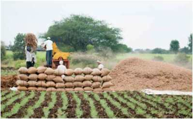 Decentralisation in Food Security System Can Reduce Hunger and Malnutrition