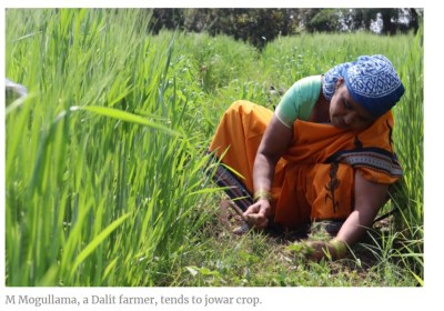 How these Telangana women farmers rode out the pandemic