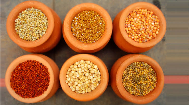 Production, procurement of coarse cereals must be increased in planned manner: Piyush Goyal