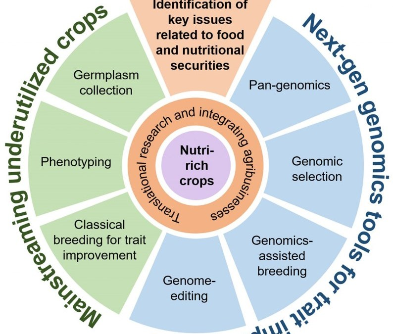UoH, ILS, and NIPGR join hands to improve the nutritional value of cereals and minor millets