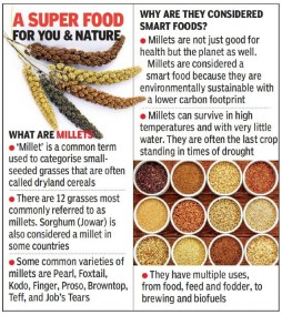 Hyderabad: Millet-based diet lowers risk of type-2 diabetes, says ICRISAT