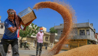Millet-based diet can lower risk of type 2 diabetes and help manage blood glucose level: Study