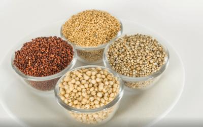 Diabete: introdurre questi due cereali poco utilizzati nella tua dieta previeneil tipo2 e riduce il rischio di ammalarsi