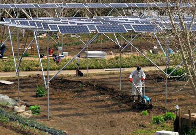 Paneles Solares Fotovoltaicos Celdas y Agricultura Solar Panels Smart Grid Japon Costa Rica