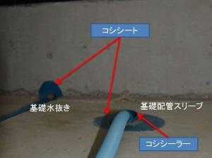 blog_import_5304785b33bcf