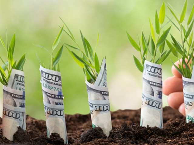 Alternative Financing Solutions to SMB Cash Flow Concerns: A Discussion with BlueVine's CEO