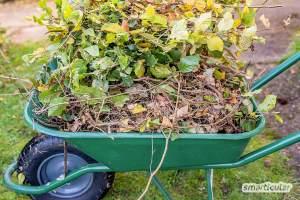 Garten Online Gestalten / Gartengestaltung Ideen Und ...