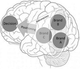 Brand positioning brain