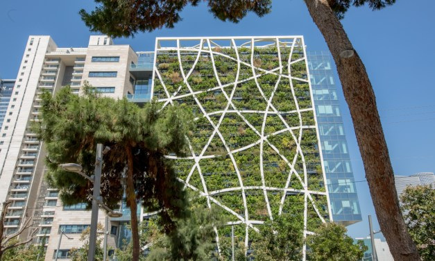 Can living walls make our cities smarter?