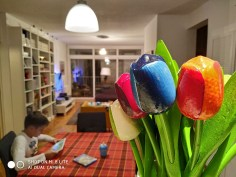 Xiaomi Mi 8 Lite Test kamere (7)