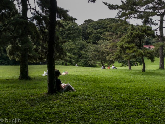 木陰の休息