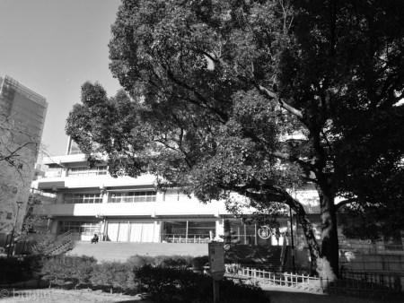 校舎の片隅で