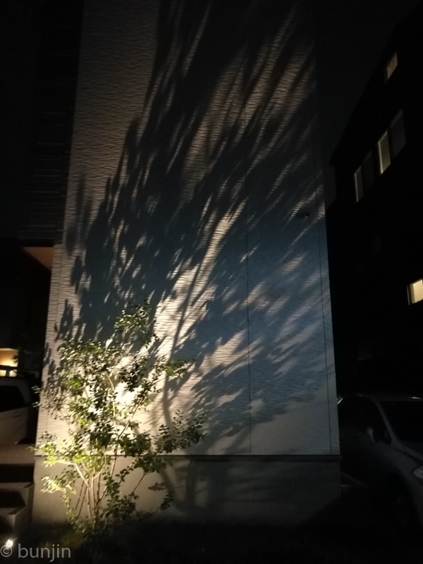 Shadow picture