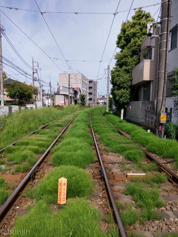 The track with green glass