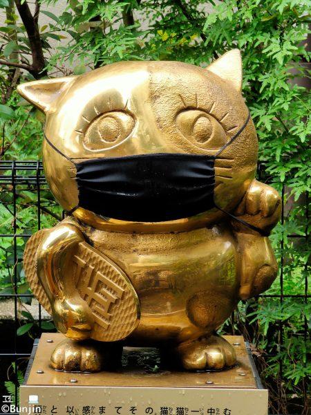 Gold fortune cat