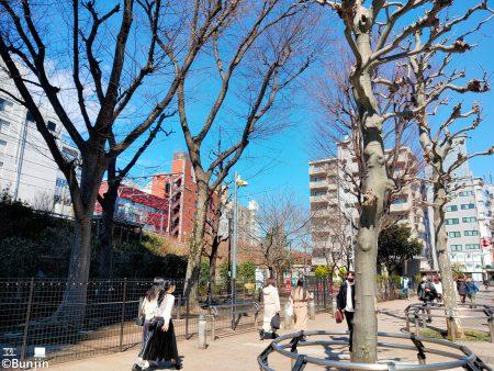 Jingu St. park