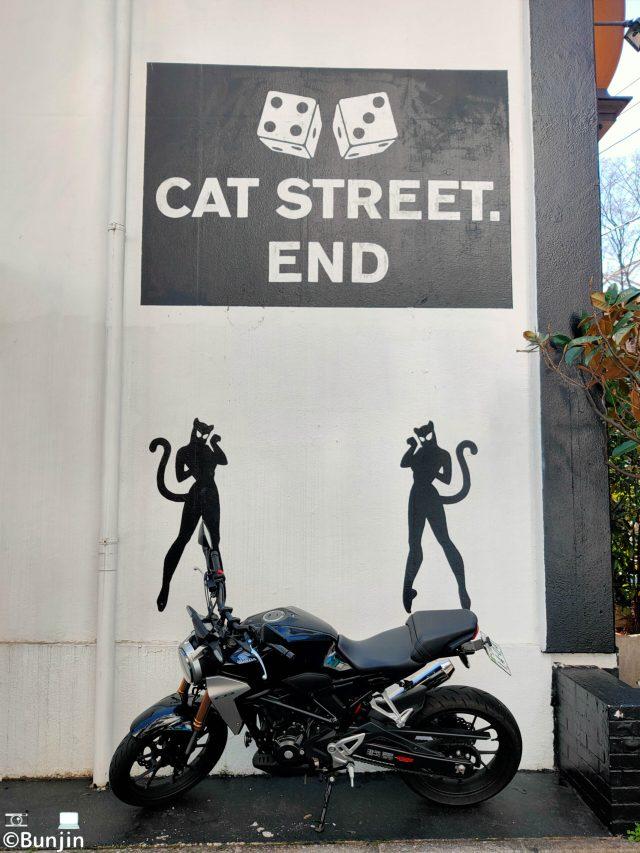 Cat Street. End
