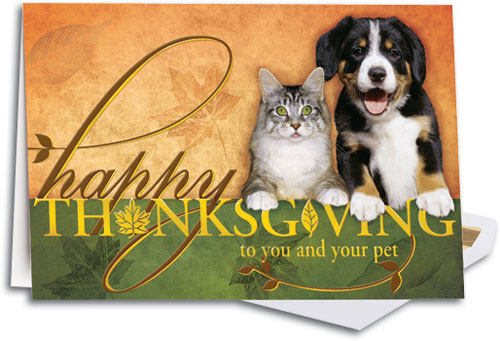 Pets Happy Thanksgiving Deluxe Folding Card SmartPractice Veterinary