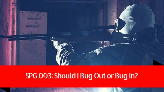 should i bug out or bug in